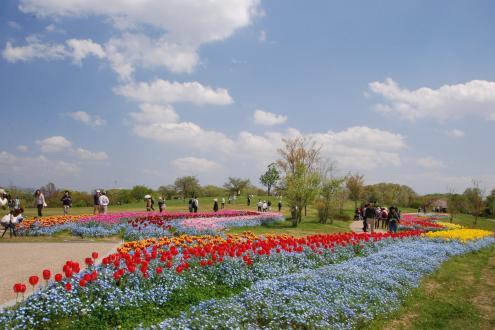 2021年4月24日・25日「奈良県・馬見丘陵公園 春のキャンピングカーショー」に参加します!